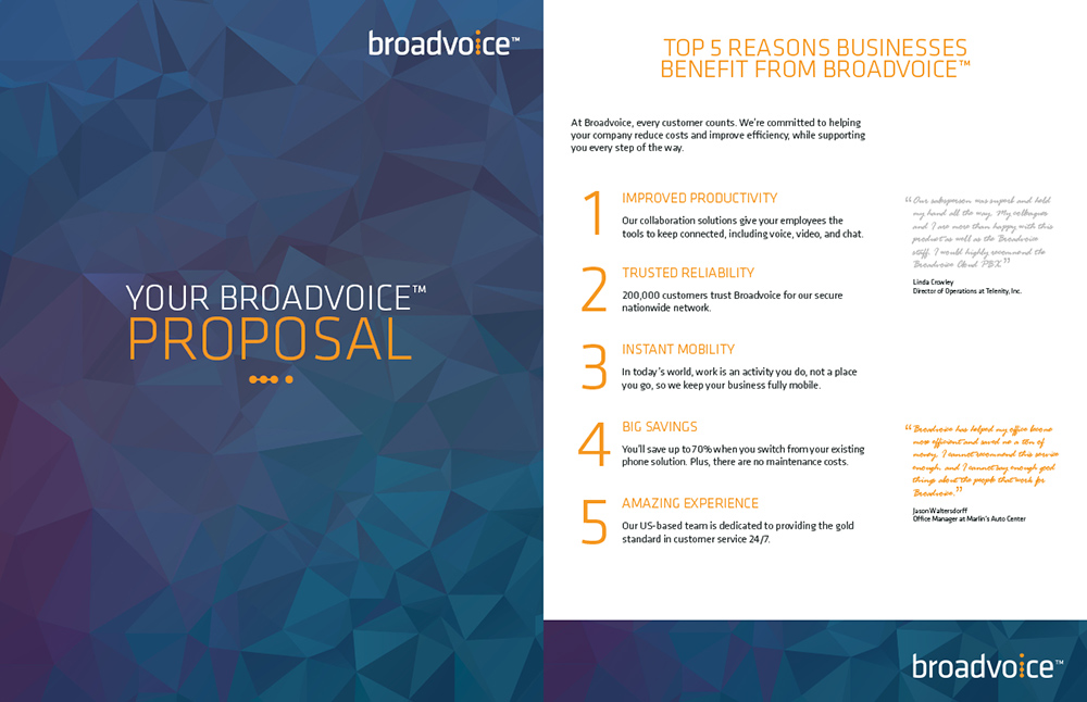 Layout for Broadvoice Proposal